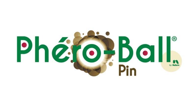 logo-Phero-Ball